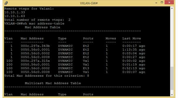 VXLAN on standalone Windows machine using head end replication